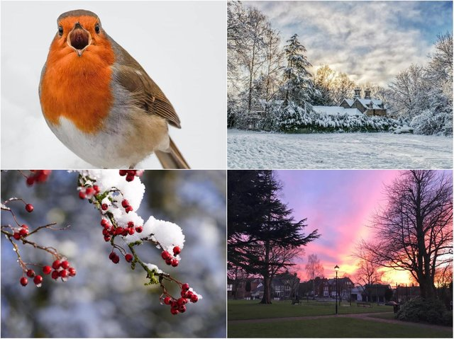 We asked our readers to send in their favourite pictures they took across the county this week.