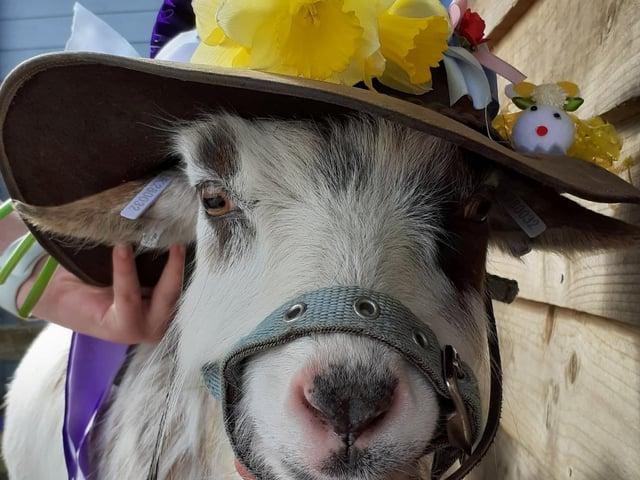 Easter fun on the farm.