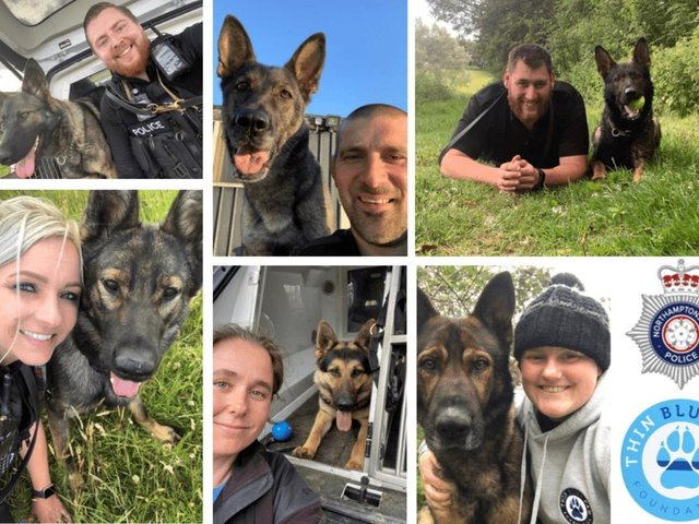These police dog handlers will be tackling Mount Snowdon in aid of the Thin Blue Paw Foundation.