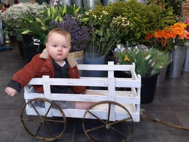 Rory Flear, nine months, at Baskets & Bunches, Sheaf Street.